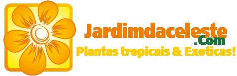 Jardimdaceleste.com - Plantas Tropicais & Exóticas!
