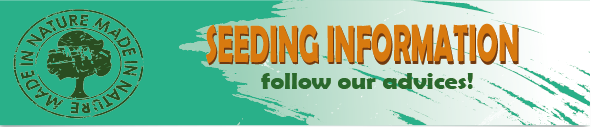 seedling info