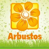 Shrubs  - Jardimdaceleste.com - Plantas do Bosque & Jardim!