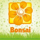 Bonsai - Jardimdaceleste.com - Plantas Tropicais & Exóticas!
