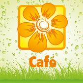 Café - Jardimdaceleste.com - Plantas Tropicais & Exóticas!
