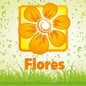 Flowers  - Jardimdaceleste.com - Plantas do Bosque & Jardim!