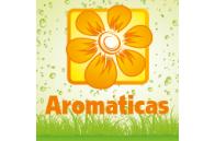 Plantas Aromáticas - Jardimdaceleste.com - Plantas do Bosque & Jardim!
