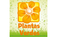 Green Plants - Jardimdaceleste.com - Plantas do Bosque & Jardim!