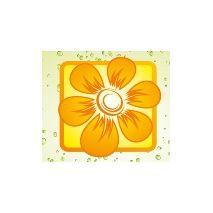 "Ilex altaclerensis ""Golden King"" - Plant - 4.9€ - Jardimdaceleste.com - Plantas do Bosque & Jardim!"