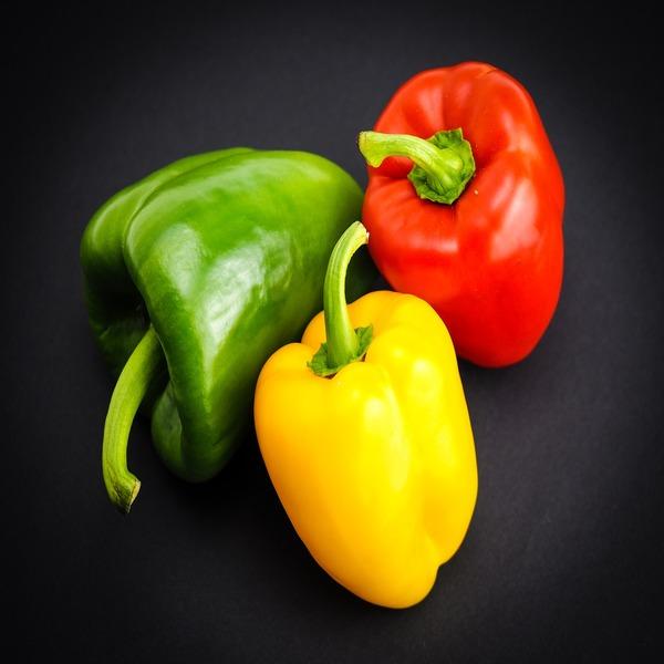 """Pimento """"Tricolor"""" (Vermelho, Amarelo e Verde) - sementes - 1.65€ - Jardimdaceleste.com - Plantas do Bosque & Jardim!"""